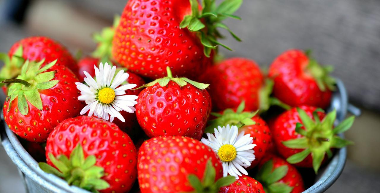 Jordbær og bikiniføre